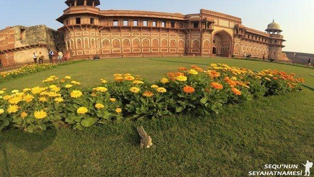 jahangiri-palace-agra