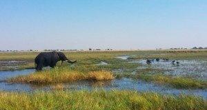 botswana-gezilecek-yerler