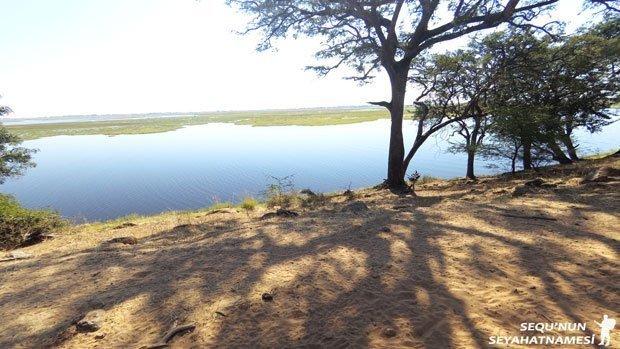 botsvana-safari-turlari