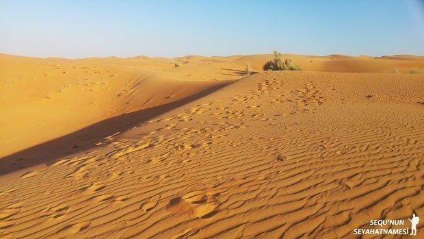 Dubai Çöl Safarisi Fiyat